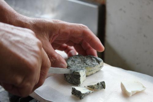 【千葉県いすみ市】チーズ工房フロマージュKOMAGATA(コマガタ)