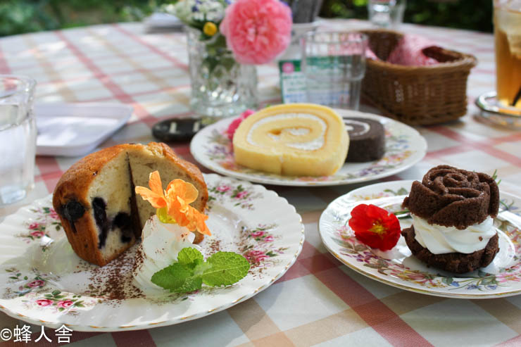 【君津市】ドリプレ・ローズガーデン ドリプレカフェ バラとネコを愛でながらお茶を楽しむ