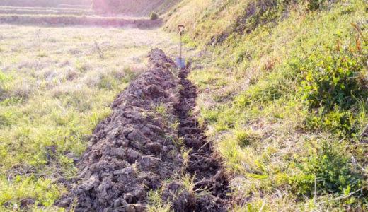 田んぼから畑に作り変える