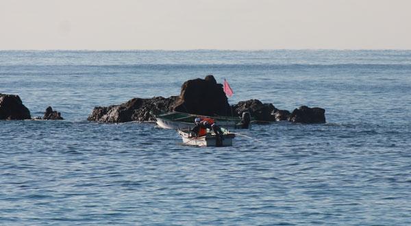 堤防近くの漁船は、ヒラメを釣っているらしい